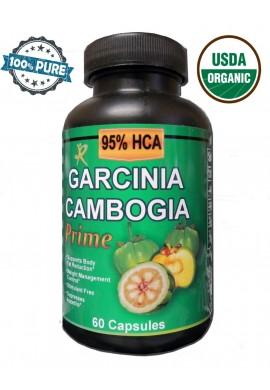 Garcinia Cambogia 95% HCA